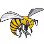 Alabama, State Hornets